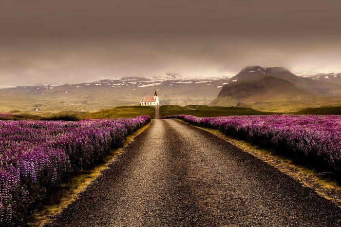"""La vuelta completa a Islandia en coche de alquiler <h5 style=""""font-size: 17px; line-height: 2.1rem; background-color: #94979C ; color: #ffffff; display: inline-block;""""> ¡El viaje más completo! </h5></br><h5 style=""""font-size: 17px; line-height: 2.1rem; background-color: #F76D60; color: #ffffff; display: inline-block;""""> desde 1600€ </h5></br>"""
