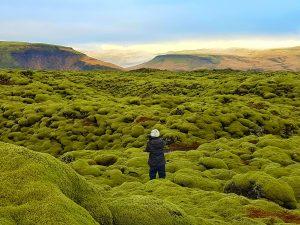 Vuelta-grupo-Islandia360