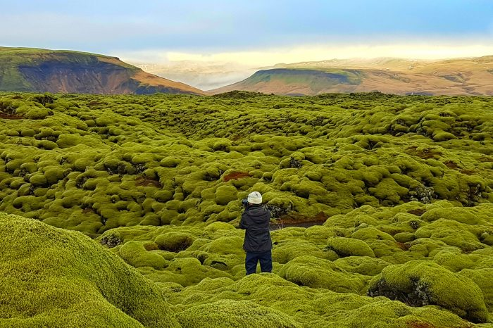 "Islandia en grupo: verano 2021 Especial<h5 style=""font-size: 17px; line-height: 2.1rem; background-color: #ffffff; color: #ff0000; display: inline-block;"">Desde 2400€</h5></br>"
